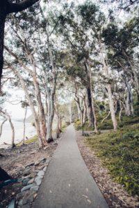 Off the beaten path - Photo by Ghiffari Haris on Unsplash